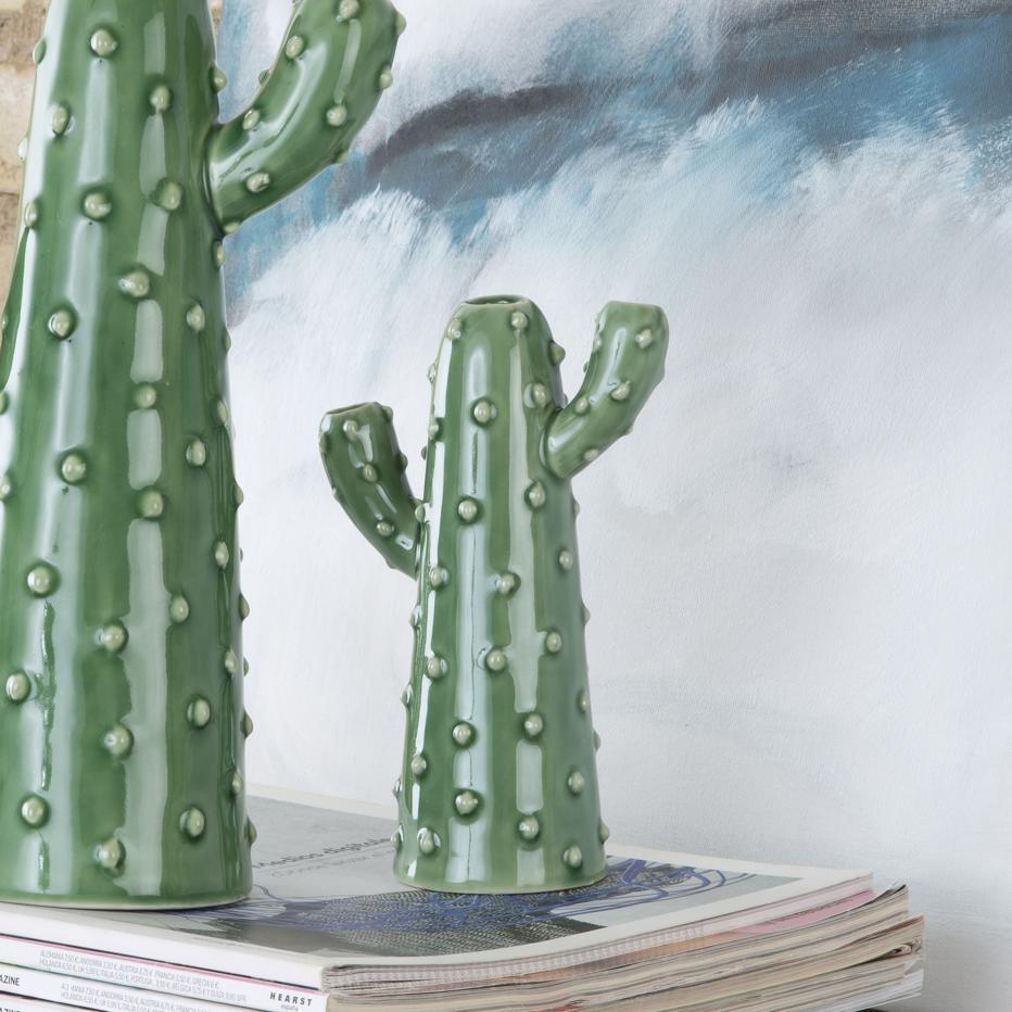 Nifos cactus verde pequeño