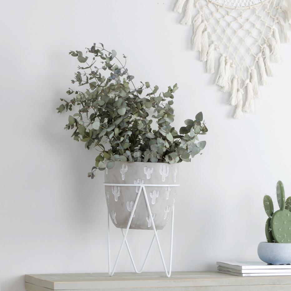 Fins small white cactus flowerpot