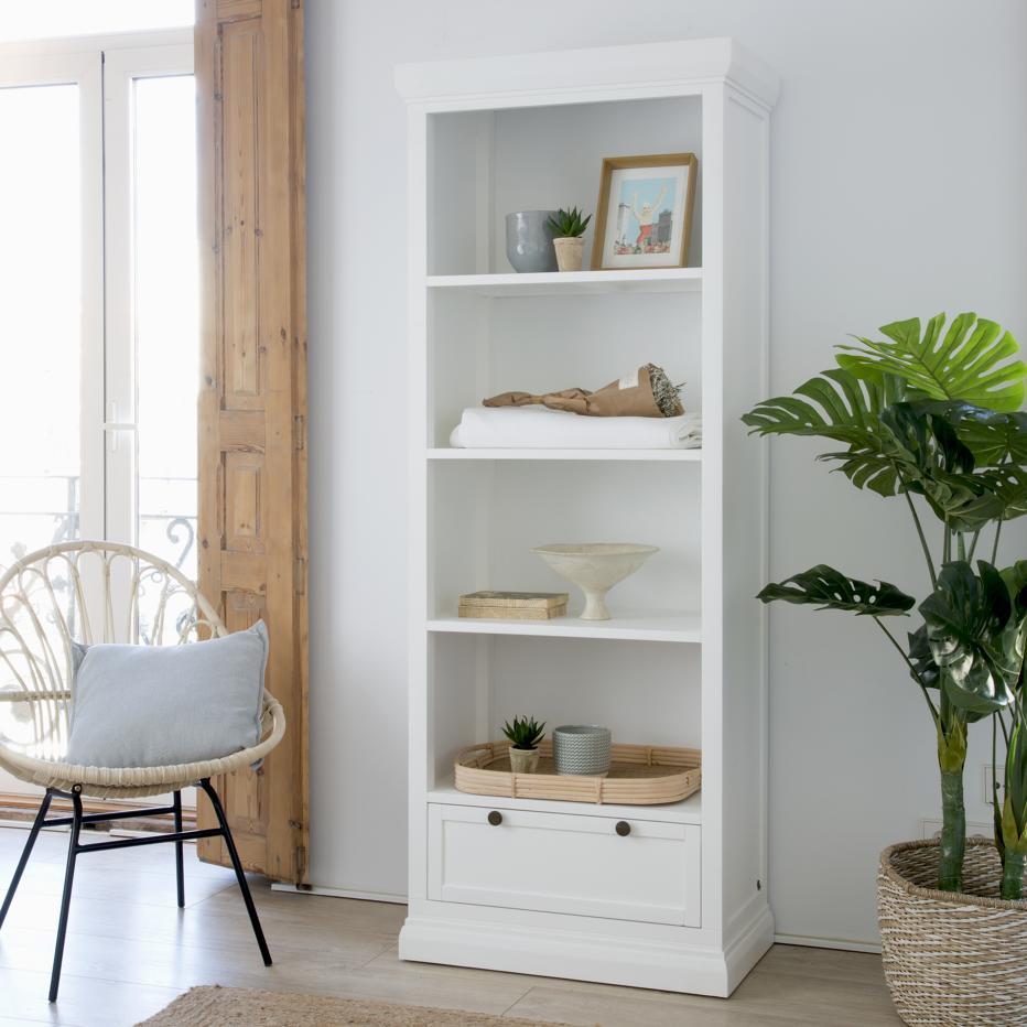Nannantes bookcase