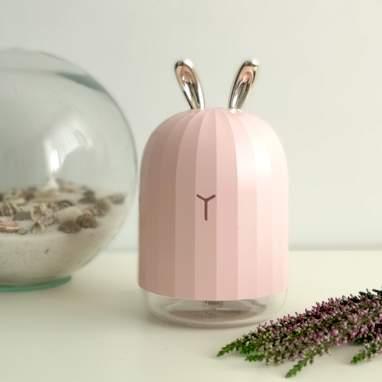 Coni diffussore di profumi rosa