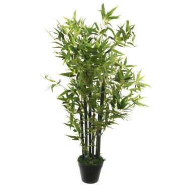 Geba pianta pvc bambù