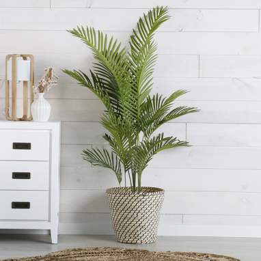 Xuel planta pvc 125x140 palmeira verde