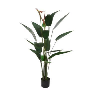 Poty planta pvc 95x150 verde