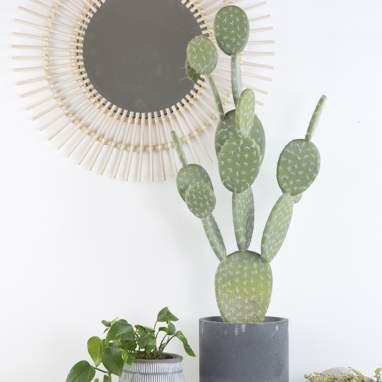 Aert cactus schiuma cemento