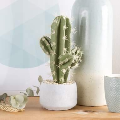 Kyle cactus schiuma cemento