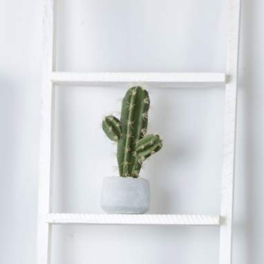 Marce foam-cement cactus