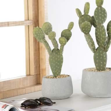 Blaj cactus espuma cemento 11,5x28