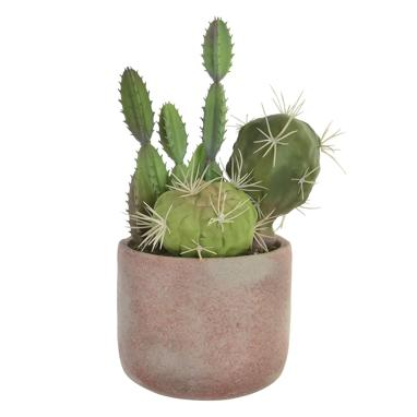 Klar cactus cemento/ eva 13x28