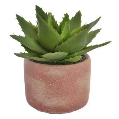Keor cactus cemento/ eva 11x18