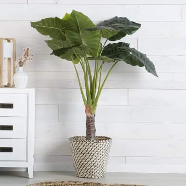 Chez green pvc plant