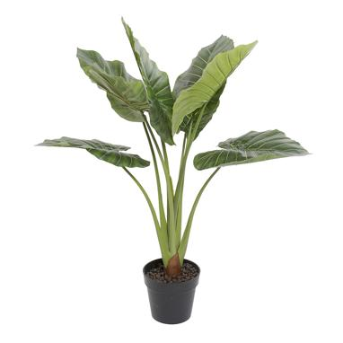 Ribe planta pvc verde 100 h