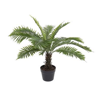Hira green pvc plant