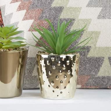 Riad planta pvc  dorado