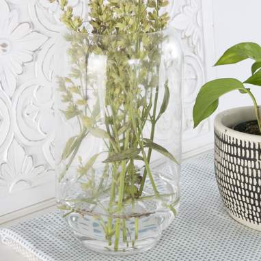 Biiga transparent glass vase