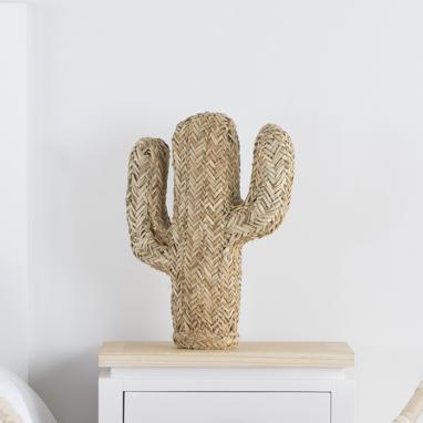 Sert figura cactus fibra intrecciata naturale