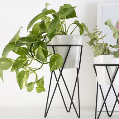 Geie vaso ceramico bianco