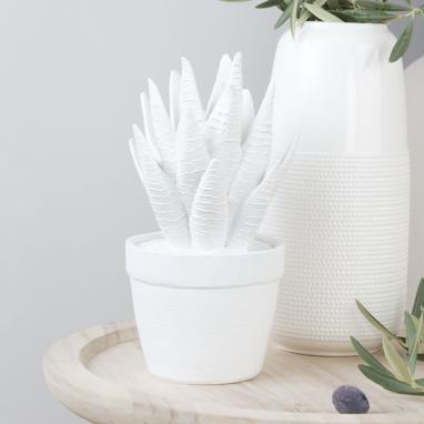 Marga figura cactus bianco