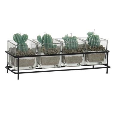 Dhabi set 4 candele cera cactus