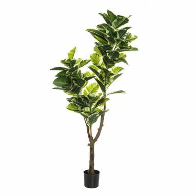 Pell pvc plant