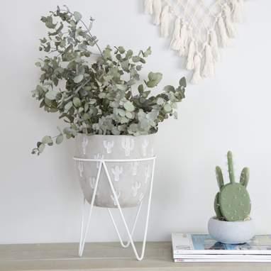 Tanb macetero cactus blanco me