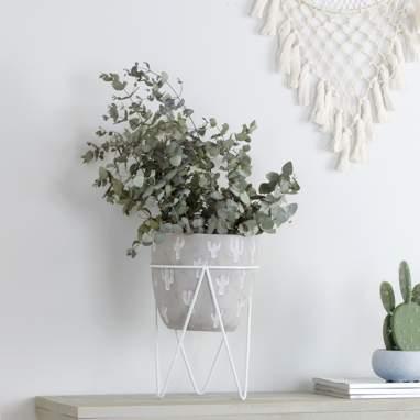 Fins macetero cactus blanco peq