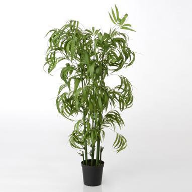 Taes planta verde bambu h140