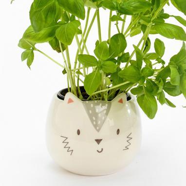 Ala cat flowerpot stand