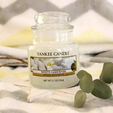 Bougie petit pot white gardenia