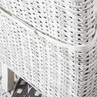 Koboo distressed white rattan chair