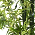 Buba planta pvc 180cm bambu